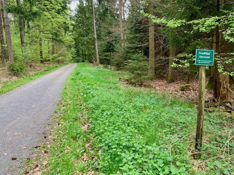 Małą tabliczka oznacza wejście nateren cmentarza