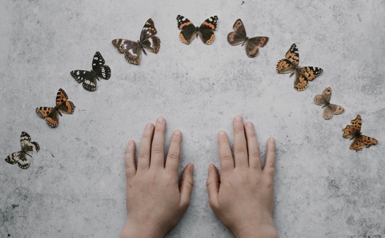 Dłonie dziecka i motyle