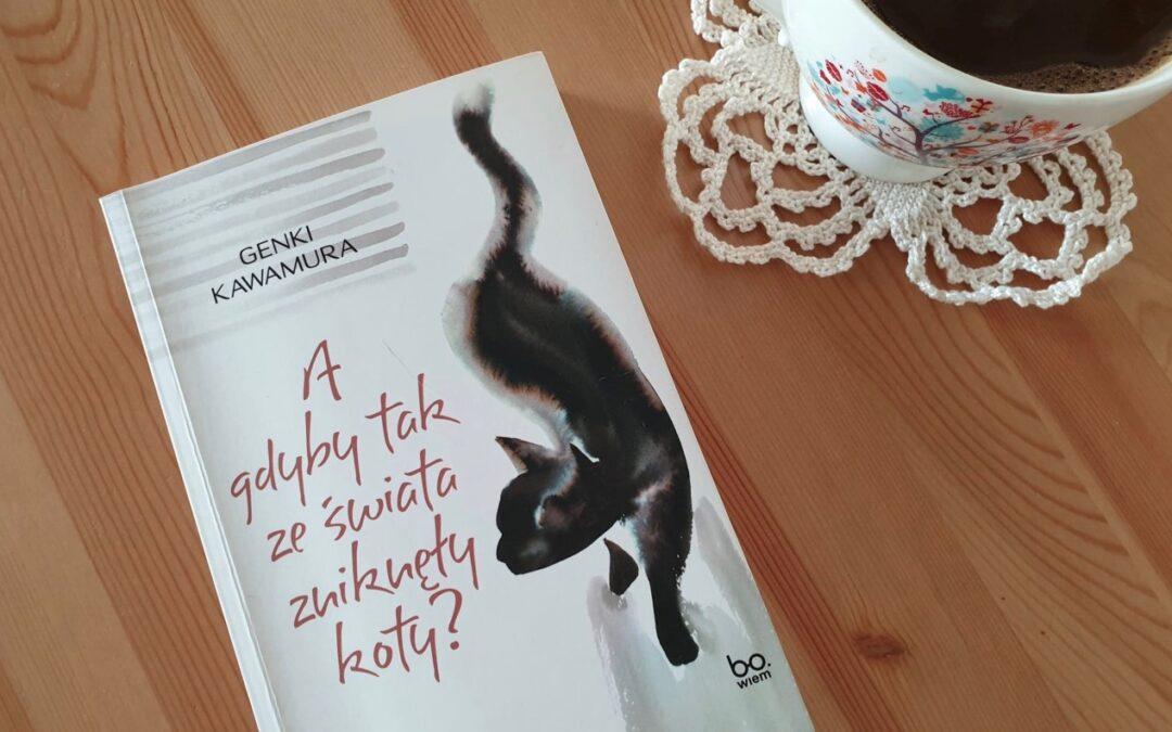 """Oksiążce """"A gdybytakzeświata zniknęły koty?"""""""
